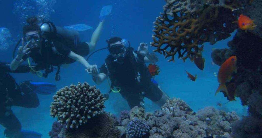 La Riviera Maya campeón en buceo